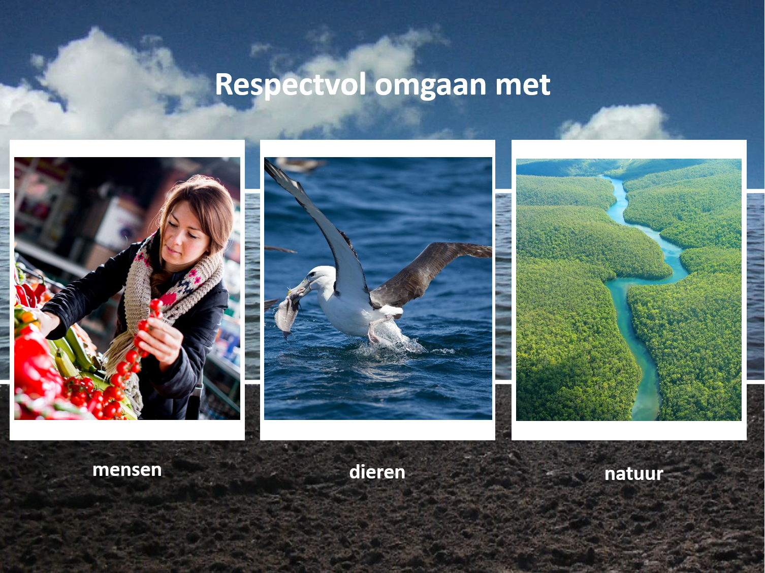 sheet Respectvol omgaan met mensen, dieren en natuur