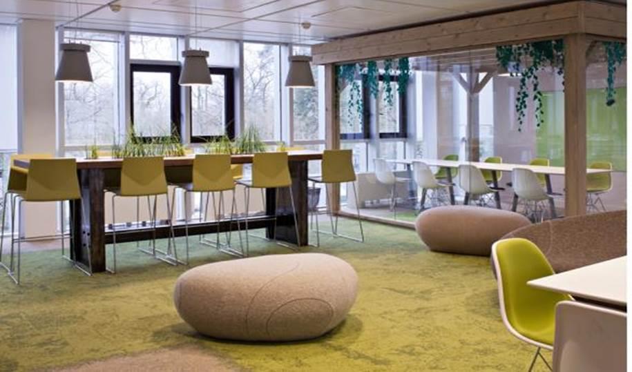 kantoorafbeelding Interface met natuur elementen zichtbaar in het tapijt